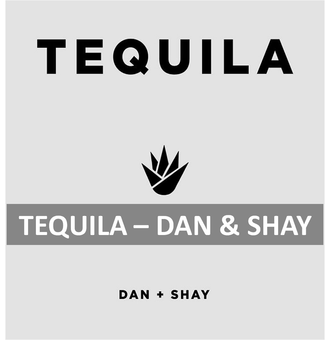 Tequila Piano Chords Lyrics Tequila Danshay Anypianolesson