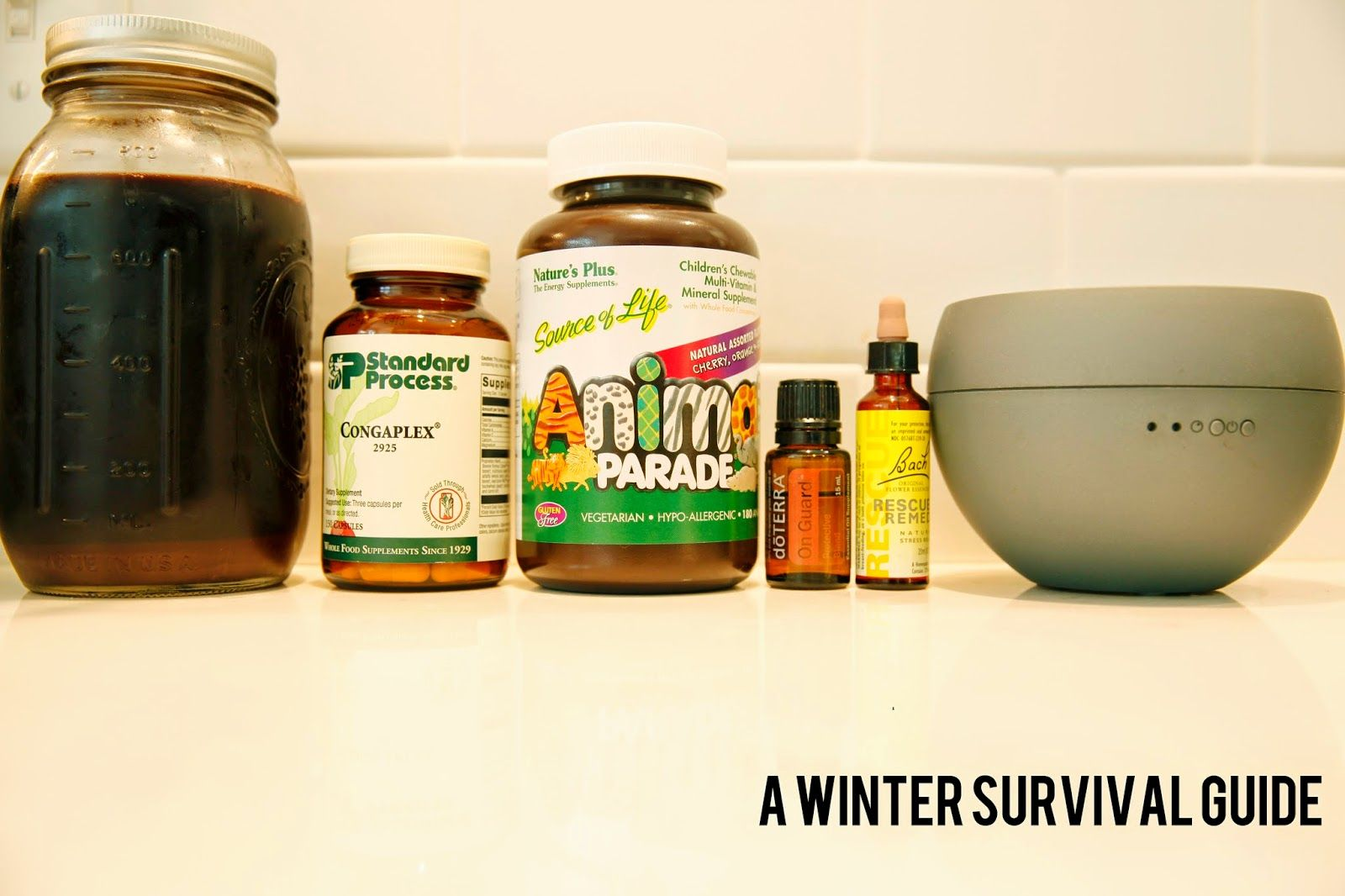 tales of me and the husband : a winter survival guide // standard