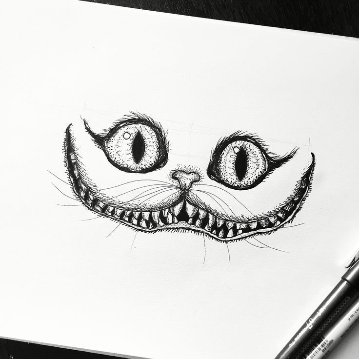 Cheshire Cat Alice In Wonderland Sketch Drawing Art