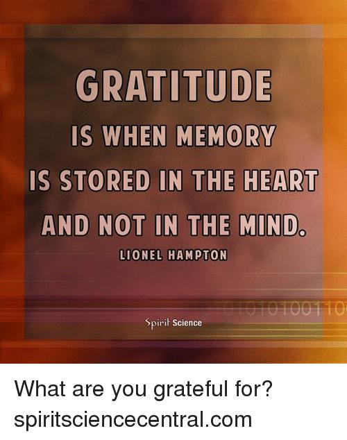 Image Result For Gratitude Memes Beer Steins Spirit Science Gratitude