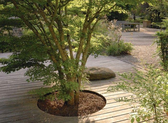 Installer une terrasse autour dun arbre