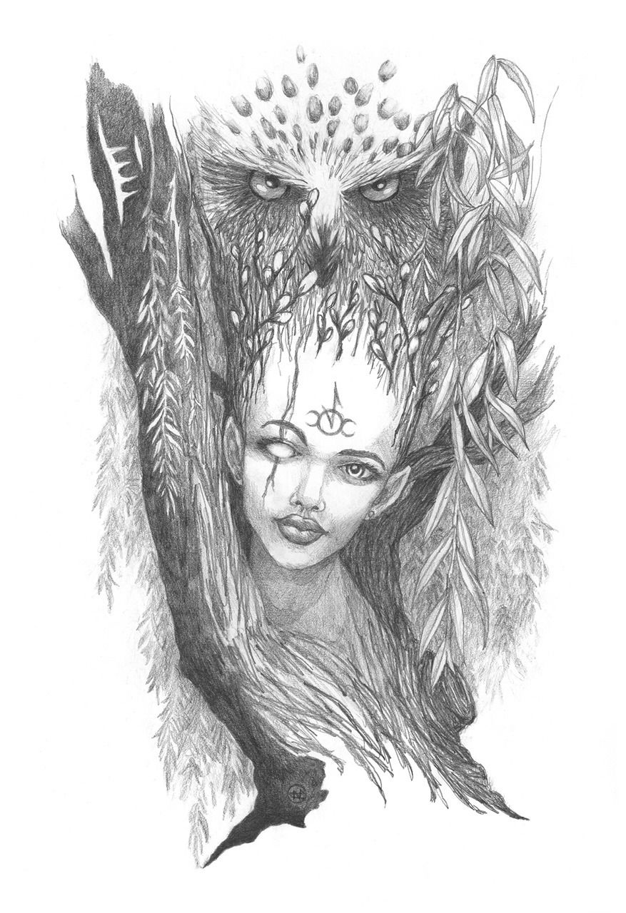 Willow Saille The Shaman, The Healing Tree Lunar month