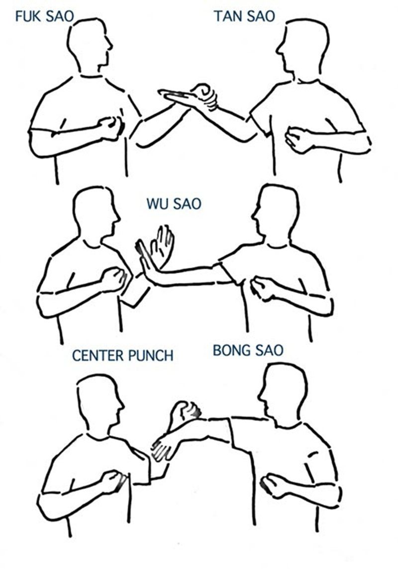 wing chun hand techniques pdf