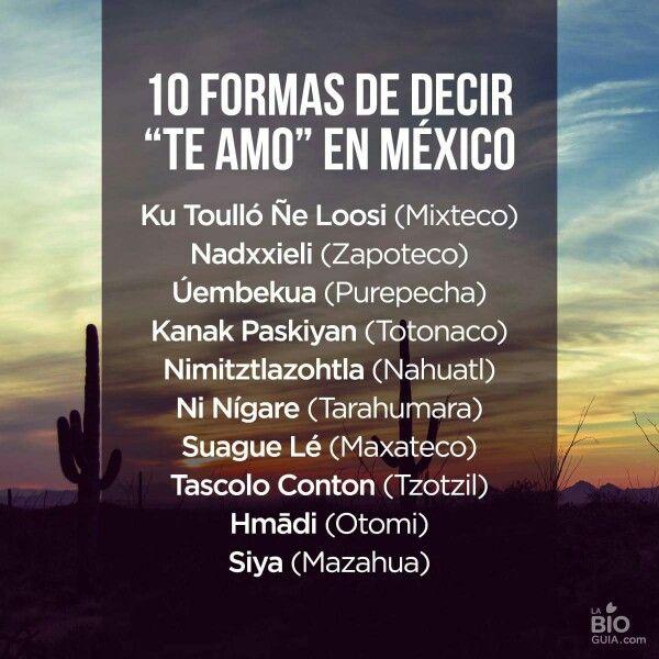 Te Amo En Mexico Quotes Pinterest Te Amo Mexico Y Decir No