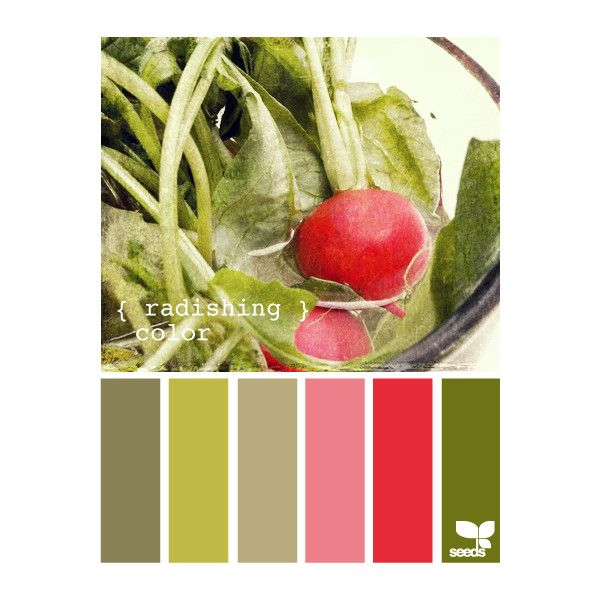 red seeds ❤ liked on Polyvore featuring home, outdoors, design seeds and backgrounds