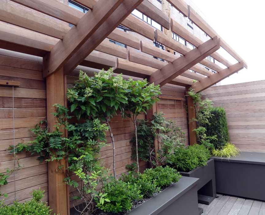 Container Garden Design Property arbor | roof deck | container | planting | urban | landscape