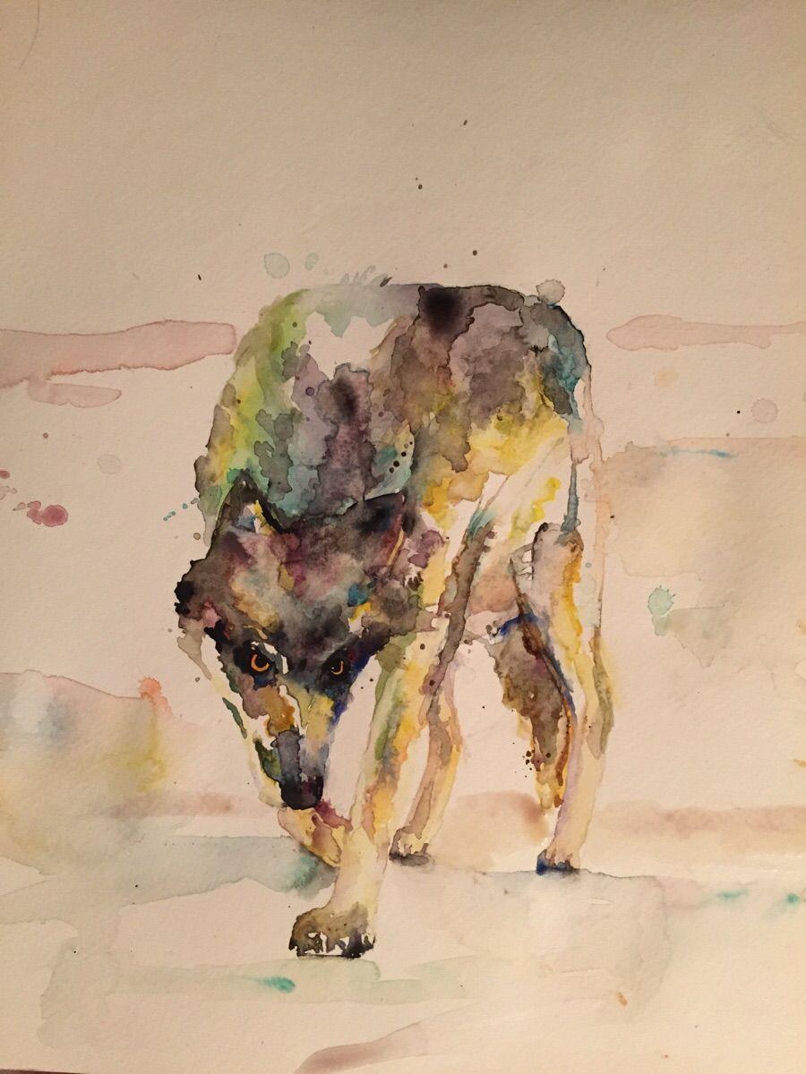 Scrolldit com - Scroll Reddit | Art I like | Art, Watercolor, Moose art
