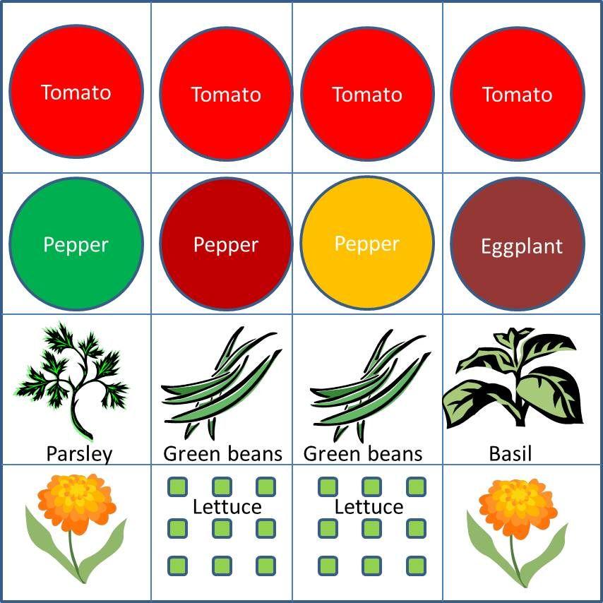 Starter Veggie Garden, 4x4: We Designed A Garden Plan