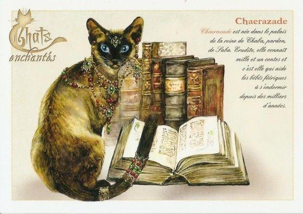 Chaerazade - illustration de Séverine Pineaux