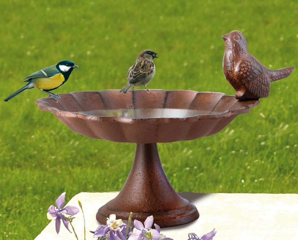 Vogeltränke mit Vogel, robuste Gartendeko aus Gusseisen - Diese ...