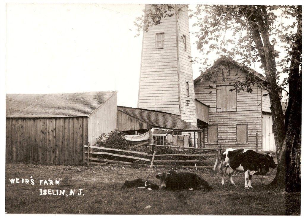 Weir's Farm House styles, Wood bridge, House
