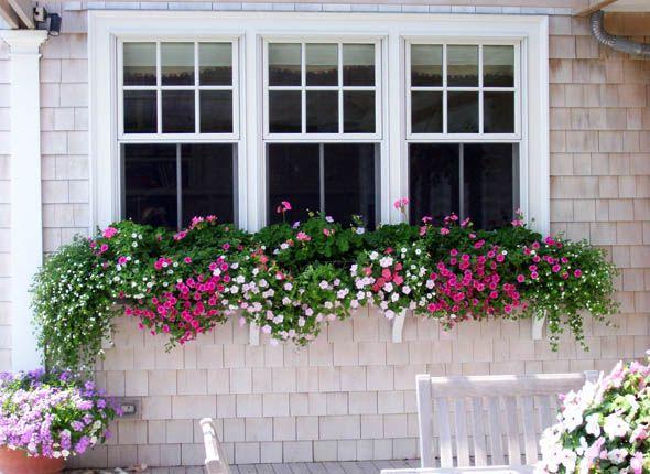Loving This Window Box On A Large Window Window Box Flowers