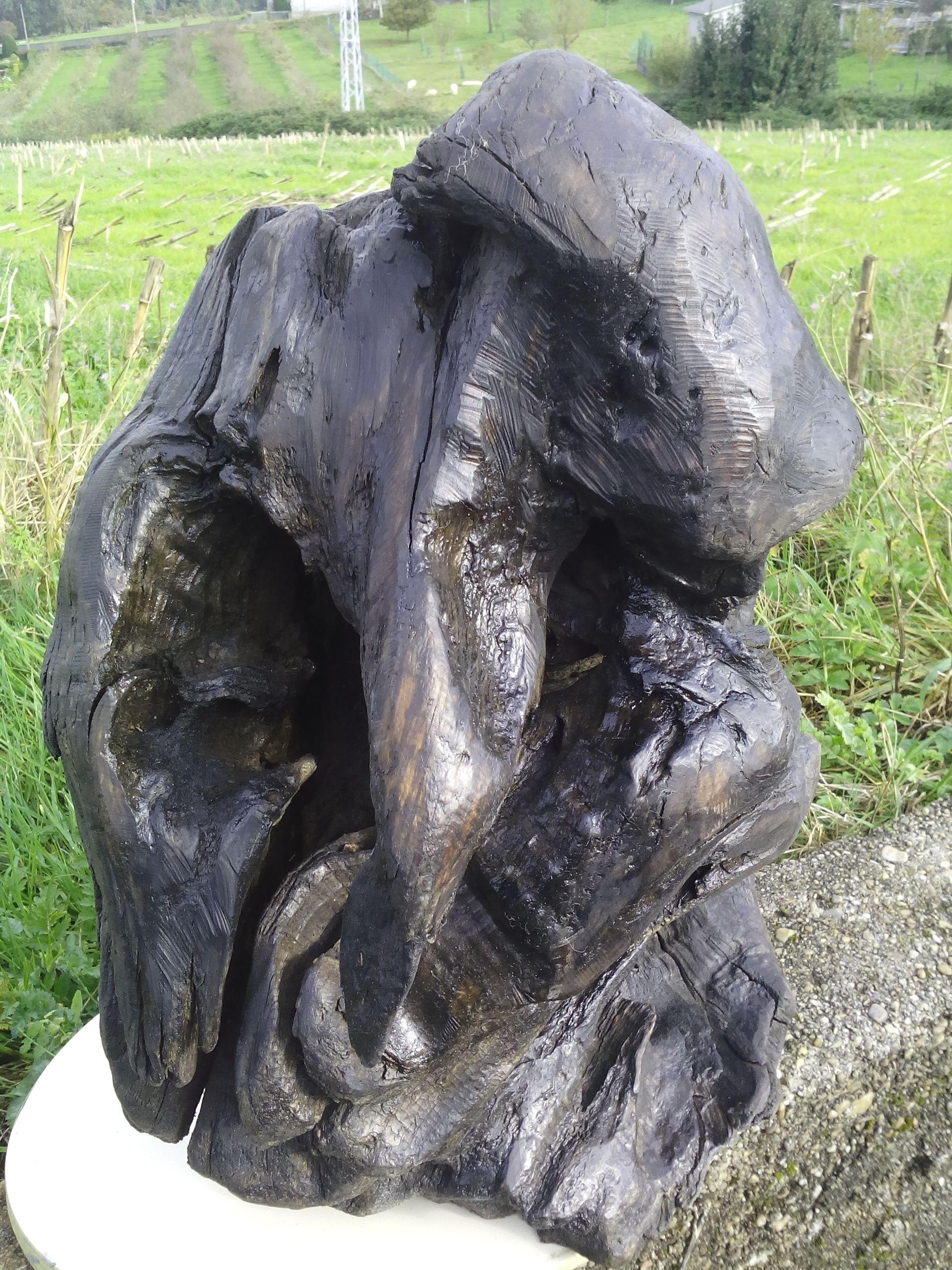 madera de roble (raíz) pinguino