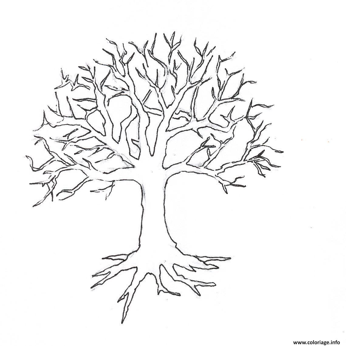 Et Oui C Est Deja L Automne Les Feuilles Tombent Tree Drawing Tree Coloring Page Tree Outline