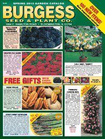 Catalog Request Seed Catalogs Plant Catalogs Plant Companies