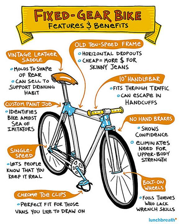 Fixed Gear Bike An Anatomy Fixed Gear Bike Fixed Gear Fixed