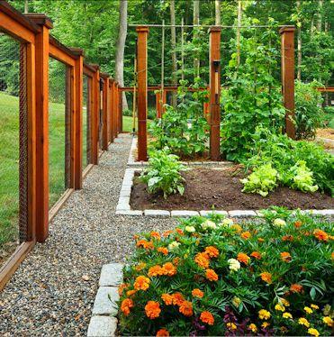 Veggie Garden With Cedar And Chicken Wire Fence To Keep