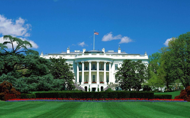 Architecture Washington DC White House City Jungle