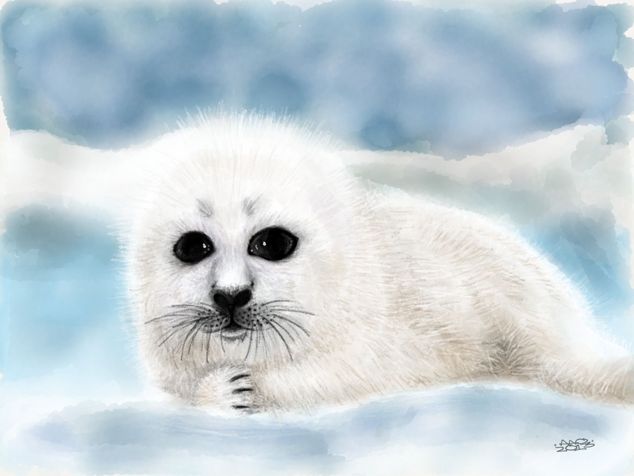 cute harp seal pups this is a drawing of a harp seal pup seals