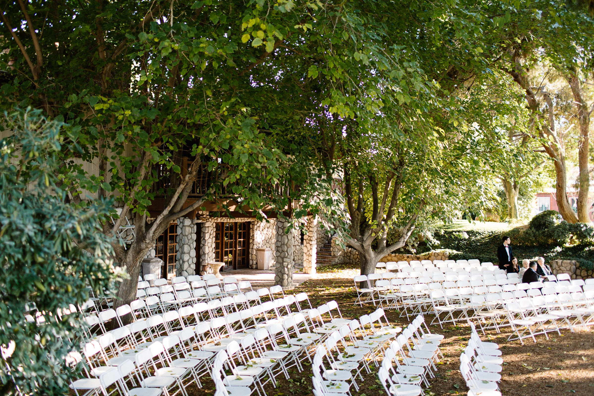 Green Grove of Trees in the Rustic Legends Ranch in Las