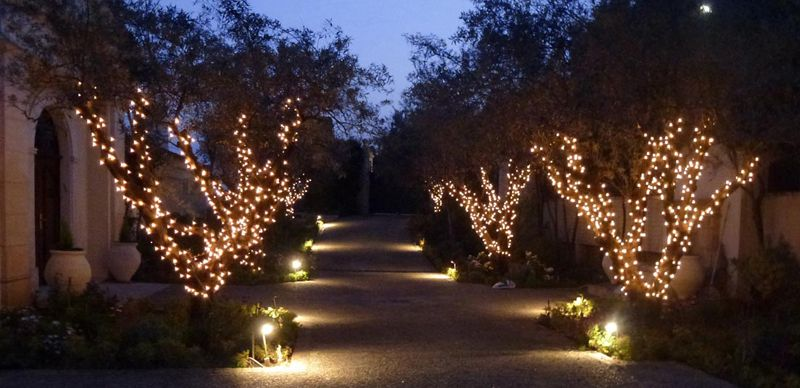 Outdoor Lighting Trees 10 outdoor lighting ideas to buy or diy outdoor lighting 10 outdoor lighting ideas to buy or diy workwithnaturefo