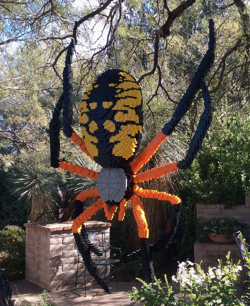A Lego Corn Spider At The Tucson Botanical Gardens My Tucson Pinterest Tucson Botanical
