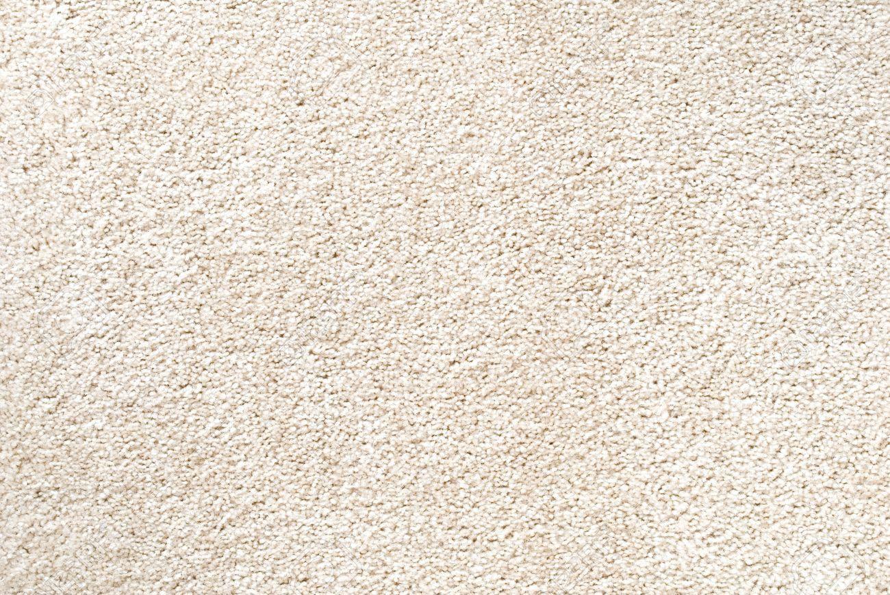 How To Bleach Carpet White Hunker White Carpet Carpet Brown Color