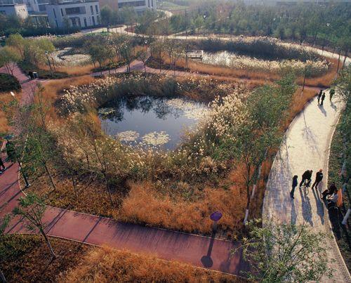 Turenscape Constructed wetlands Tianjin Qiaoyuan Wetland Park