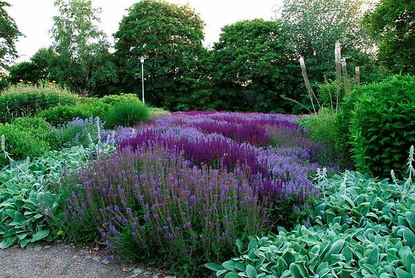 Piet oudolf dr mparken enk ping garden pinterest for Tuinontwerp eetbare tuin