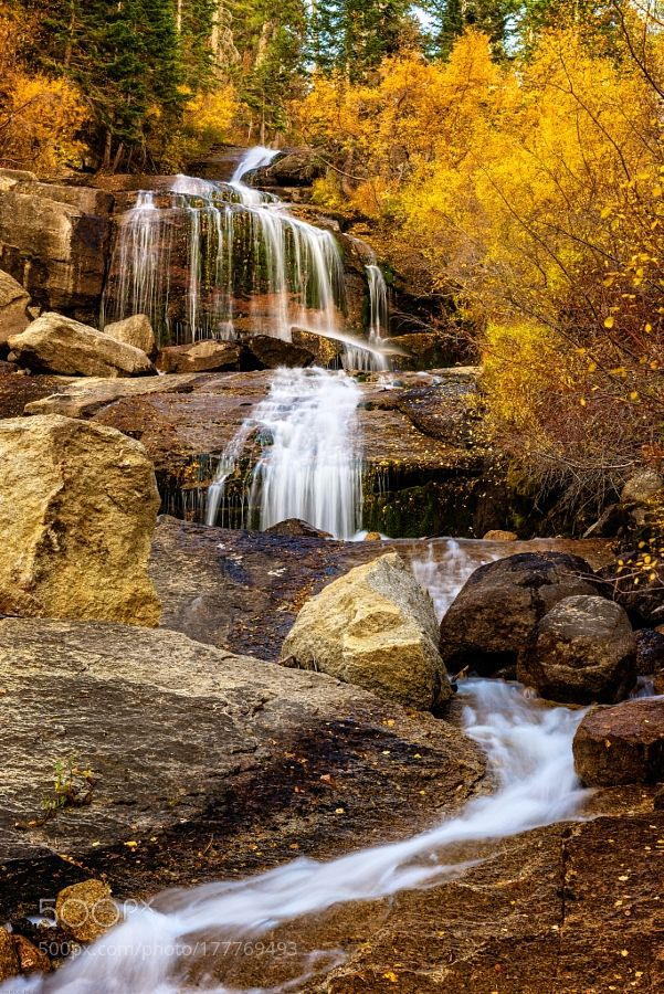 Aspen-Lined Waterfalls by john297. Please Like http://fb.me/go4photos and Follow @go4fotos Thank You. :-)
