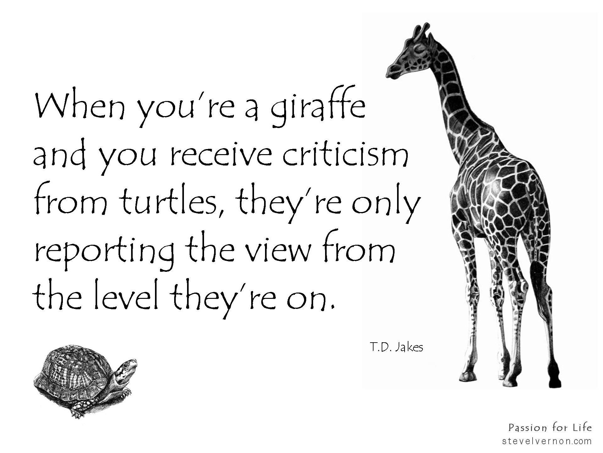 Criticism giraffe turtle perception perspective key concepts criticism giraffe turtle perception perspective biocorpaavc Choice Image