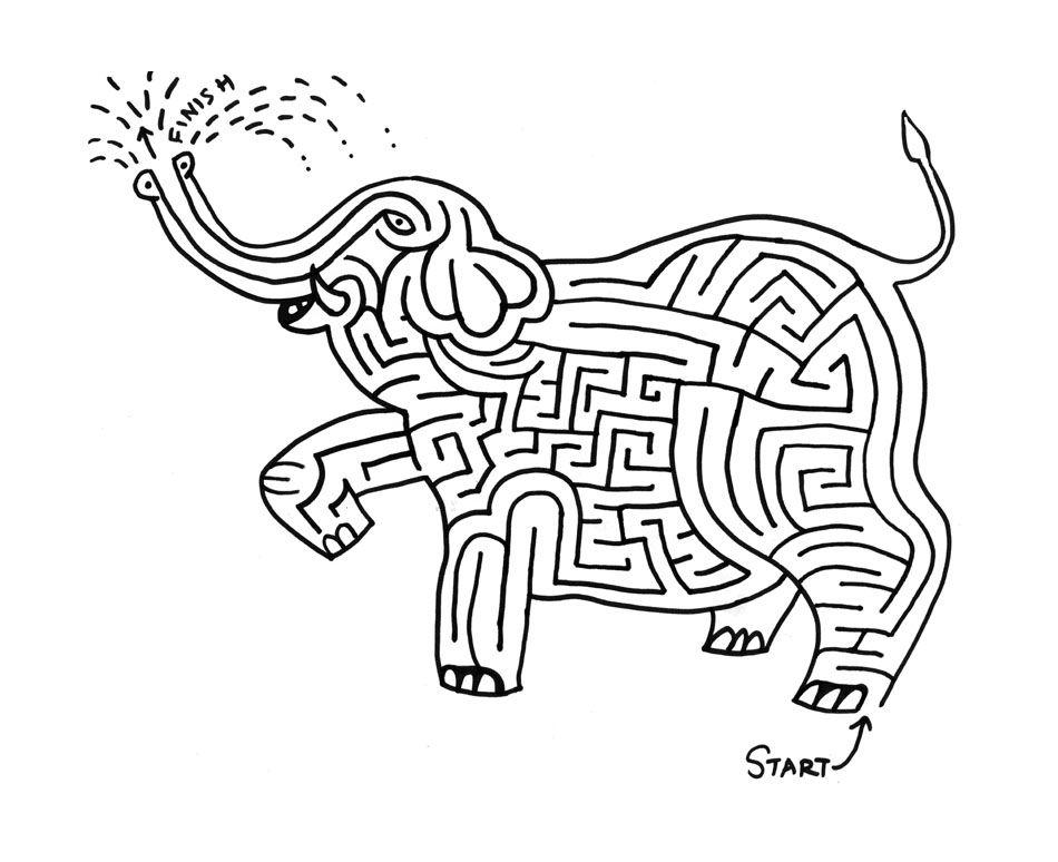 elephant trip