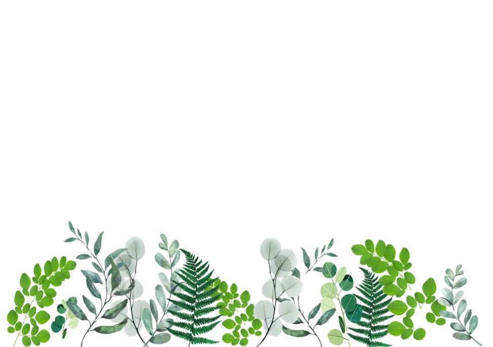 desktop wallpaper plants   Plant wallpaper, Pretty ...