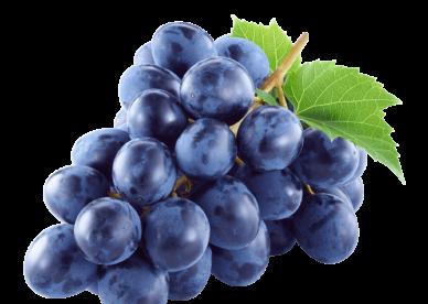 صور خلفيات رمزيات عنب بجودة Hd عالم الصور Grapes Fruit Trees For Sale Small Fruit Trees