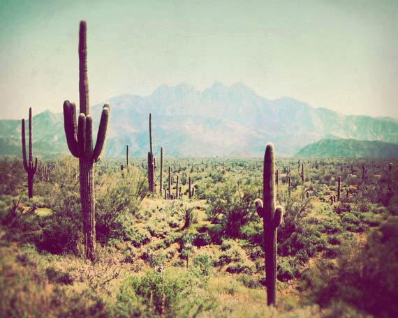 Southwest Photograph Wild West Fine Art Photography Arizona By JourneysEye Via Etsy Fpoe