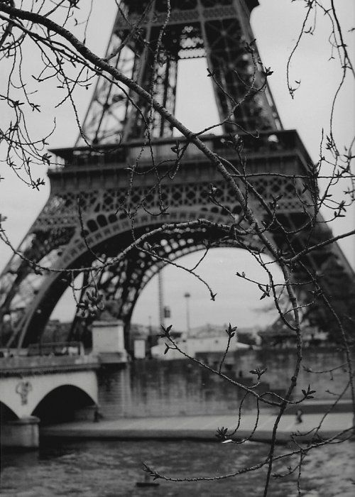 Google image result for http s6 favim com orig 65 bampw black and white cute eiffel tower favim com 597343 jpg