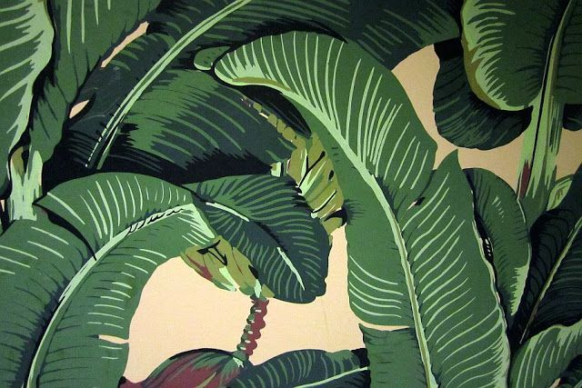 Banana Leaf Wallpaper Pesquisa Google Backgrounds And