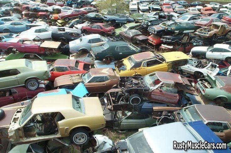 Mustang Junkyard Voitures Abandonnees Voiture Moto Voiture
