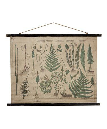 Another Great Find On Zulily Botanical Rolled Canvas Wall Décor Zulilyfinds Canvas Decor Canvas Wall Decor Wall Canvas