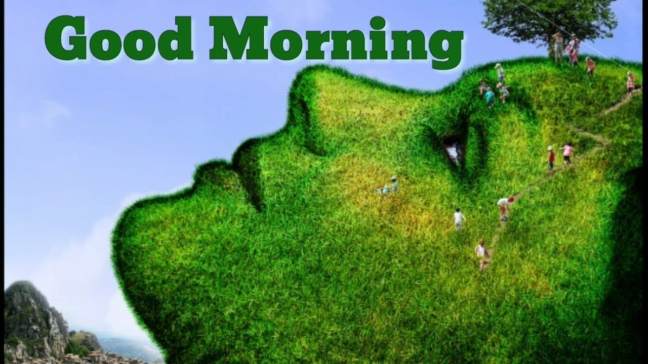 Nature Good Morning Pics Hd Download Share With Whatsapp Good Morning Images Morning Pictures Morning Images