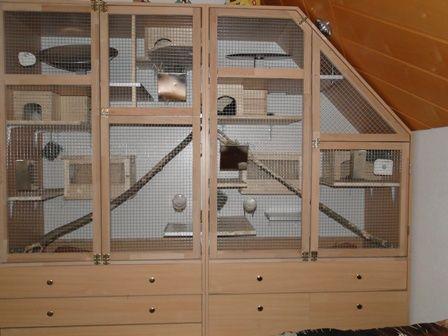 Een Mooie Zeer Ruime Chinchillakooi Zelf Gemaakt Van Een Oude Kast Nice Chinchilla Cage Chinchilla Kafig Chinchilla Kleintierkafig