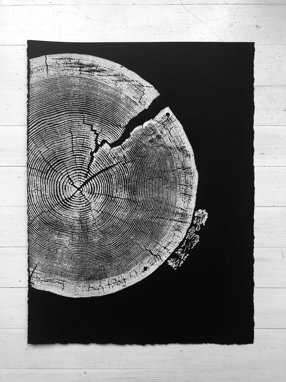 Crater Lake Oregon, Tree slice art print, Woodcut, tree rings, 18x24, Tree ring print, Tree stump art, Christmas art ideas, Christmas print #craterlakeoregon