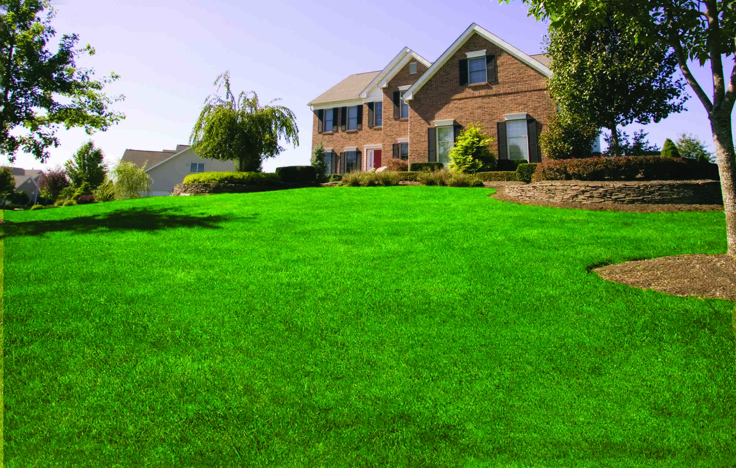 Lawn Care Service Maintenance Lawn Doctor Official Site Lawn Care Lawn Beautiful Homes