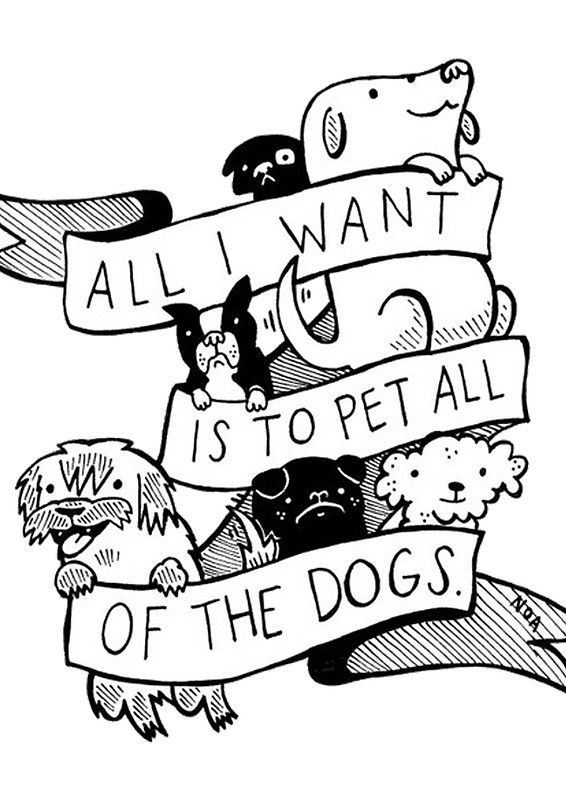 All I Want Is To Pet All Of The Dogs Dog Love Dog Quotes