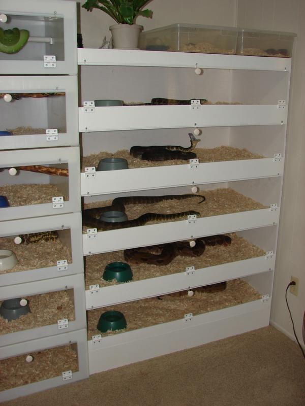 How To Make A Heated Snake Room