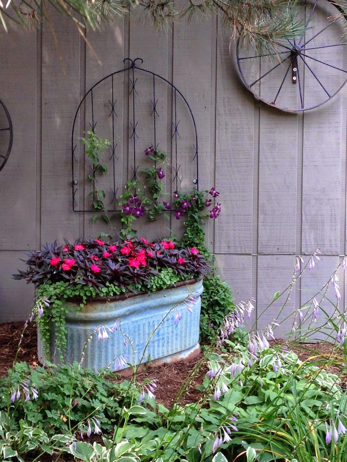 My garden diaries potted plants pinterest gardens garden