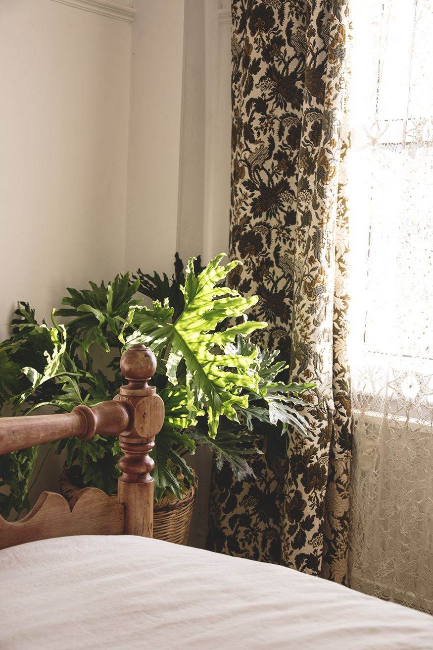I Love This Huge Monster Plant Next To Our Vintage Brocade Curtains In 2020 Antique Shop Interior Shop Interior Design Interior Design Masters