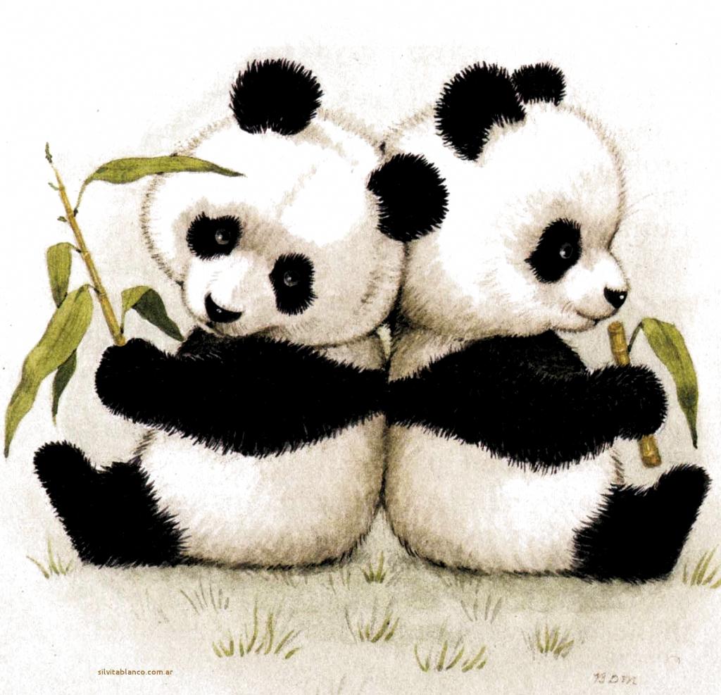 Oso Panda Osos Pandas Dibujo Oso Panda Panda Bebe