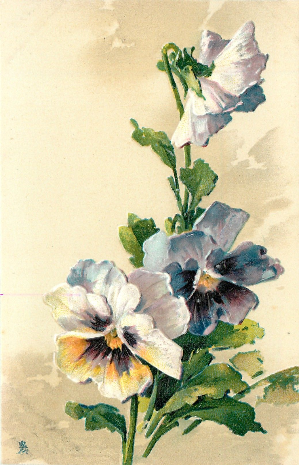 blue and yellow/purple/white pansies, two face forward, one semi open above faces right