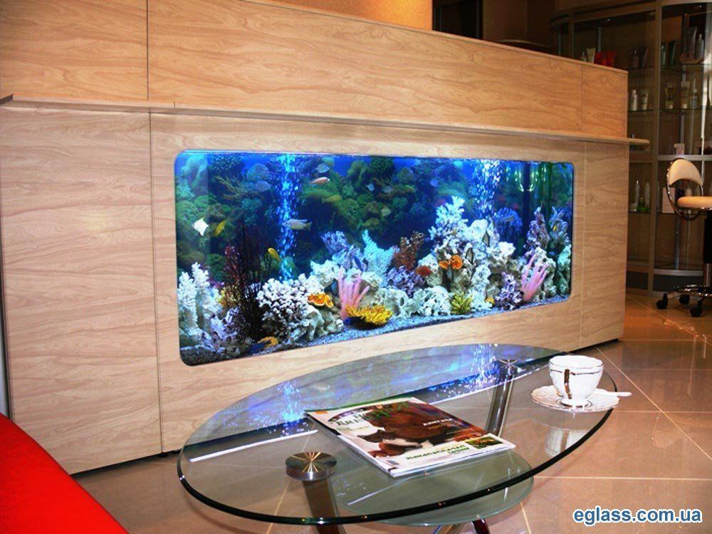 1330174560_sea-aquarium-2.jpg 1000×750 пикс